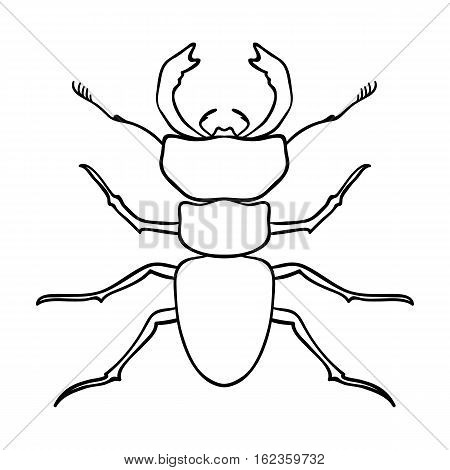 Forest red ant icon in outline design isolated on white background. Insects symbol stock vector illustration.