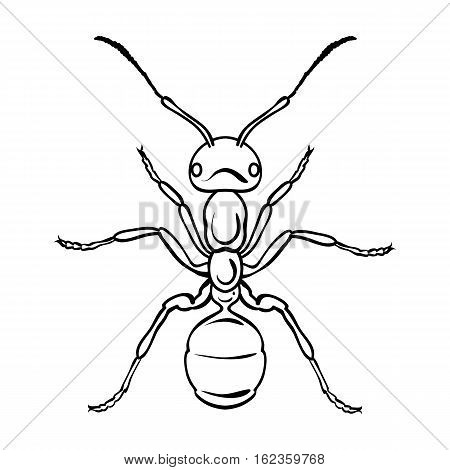 Ant icon in outline design isolated on white background. Insects symbol stock vector illustration.