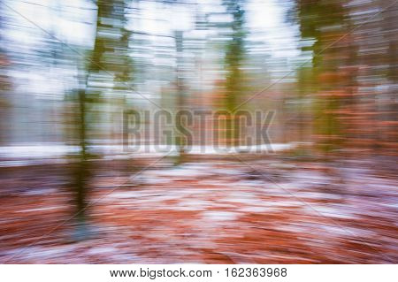 Abstract Winter Forest Background