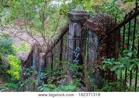picture of a decayed rusted and overgrown fence