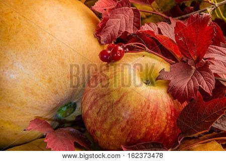 Yellow pumpkin, red apple and red viburnum fruits against the backdrop of autumn leaves of maple and viburnum. Still life