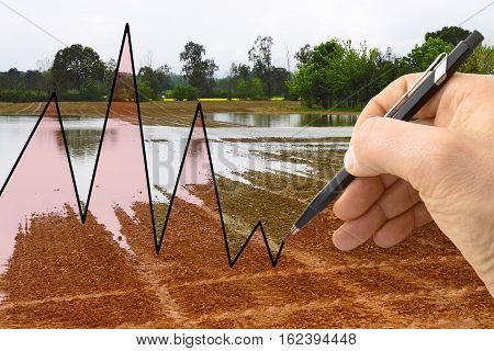 Hand drawing a graph about meteorology - concept image
