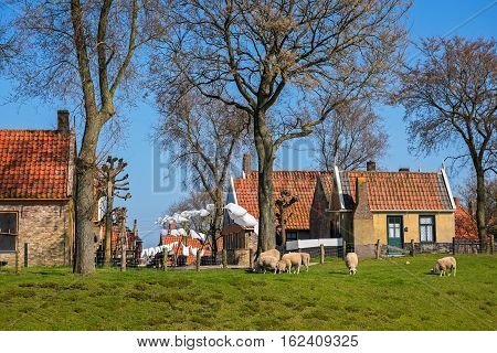 In open-air museum on a sunny  spring day, Enkhuizen, The Netherlands