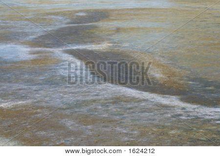 Baylands Background