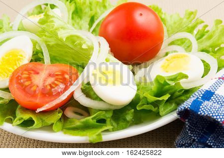 Close-up Of A Small Portion Of Fresh Dishes
