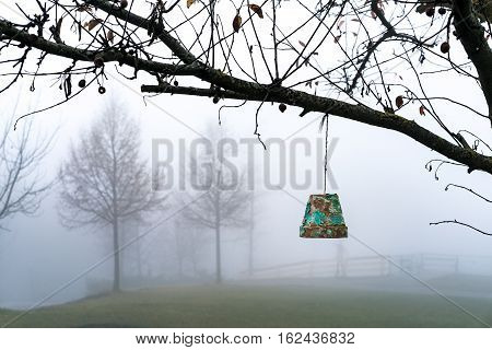 Flowerpot Hanging From A Tree