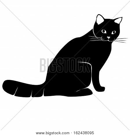 single sitting black cat, siluette, isolated, black and white, vector, isolated on white