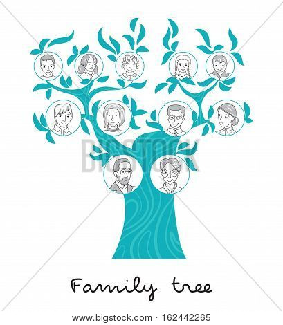 Family tree chart, genealogical tree, family portraits, pedigree thin line style vector