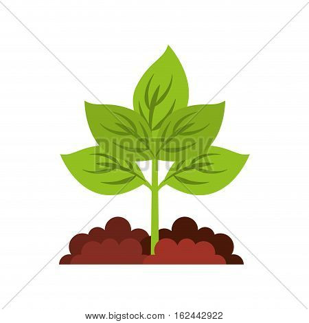 agriculture cultive isolated icon vector illustration design