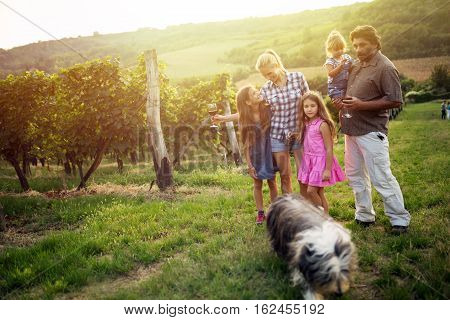Happy wine grower family walking in vineyard