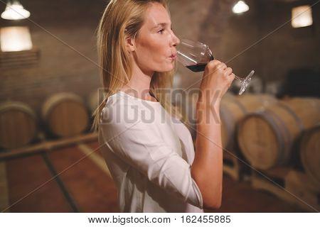 Cute female tasting wine in winery cellar