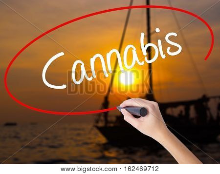 Woman Hand Writing Cannabis With A Marker Over Transparent Board