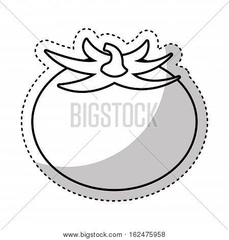 tomato fresh vegetable isolated icon vector illustration design