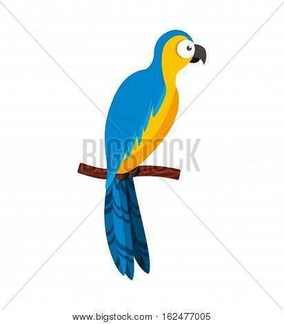 parrot tropical bird icon vector illustration design