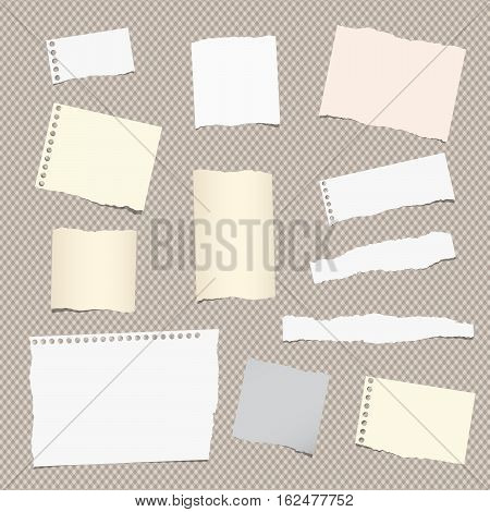 Pieces of different size ripped note, notebook, copybook paper sheets stuck on squared pattern.