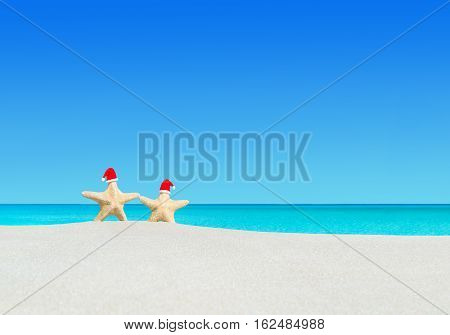 Sea stars couple (starfishes) in red Santa hats at ocean sandy beach. Merry Christmas and Happy New Year travel destinations for tropical vacations concept.