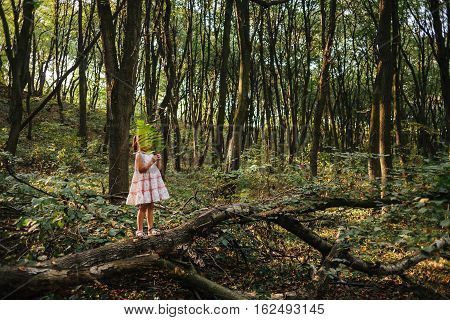 little girl standing in the forest with ferns. solitude, loneliness,