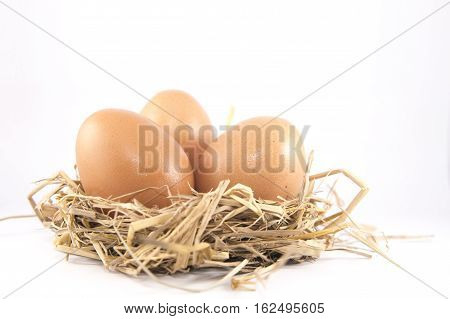 Eggs isolated on the table white background