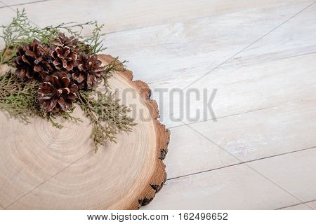 Wooden board with leaves of thuja and pine cones on white wooden table