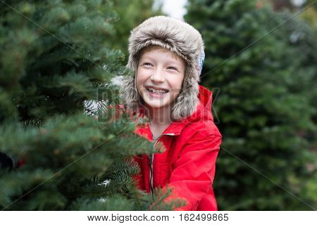smiling cheerful boy in trapper hat and warm winter clothes choosing the tree at christmas market enjoying the holiday season