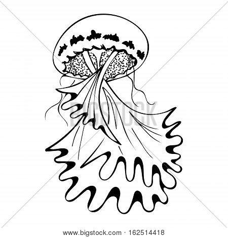 Vector painting jellyfish. Medusa Illustration isolated on white background element tattoo design cartoon doodle.