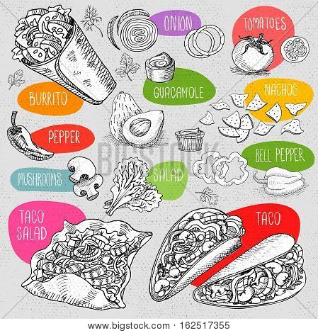 Set of stickers in sketch style, food and spices, old paper textured background Fast food. Mexican food. Taco, burrito, ingredients, mushrooms, tomato, pepper, onion, salad