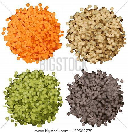 Various types of lentils piles set vector illustration. Green, black, brown and red lentils
