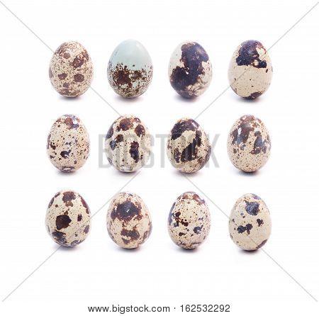 Set of dozen spotted quail eggs on white background