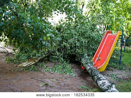 Tornado in the city of Minsk, Republic of Belarus 13.07.2016, consequences of natural disaster of destruction of inhabited constructions more than 100 trees are also tumbled down