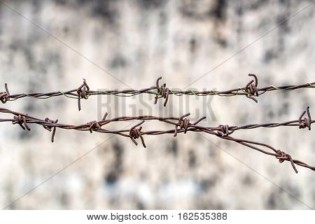 Close-up of corroded barbed wire on blurred old brick wall. International Day of Commemoration in Memory of the Victims of the Holocaust, Amnesty concept.
