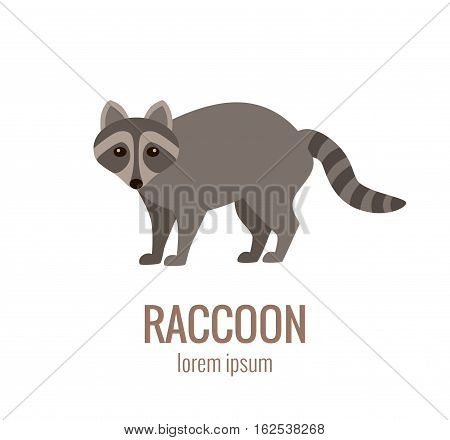 Flat vector raccoon logo isolated on white background. Colorful illustration of forest raccoon for your company logo or label. Flat style European forest animal collection