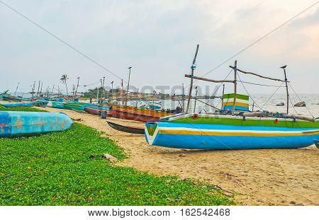 Moored on the beach fishing catamaran-boats with numerous crows sitting on the sails Hikkaduwa Sri Lanka.