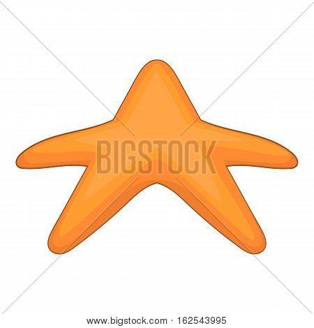 Starfish icon. Cartoon illustration of starfish vector icon for web design