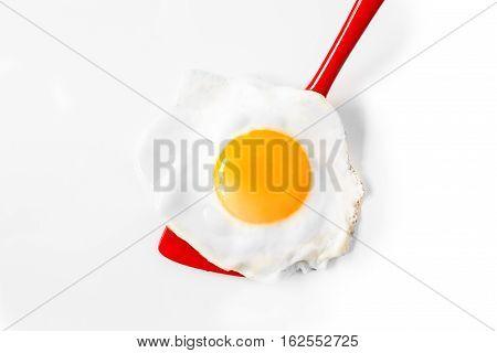 Sunny side up egg on a spatula