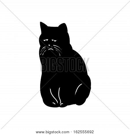 This is a pathetic black cat on a white background. Silhouette of a cat with a sad abstract vector