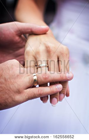 Men's and women's hands in wedding rings. Hands of the newly-weds
