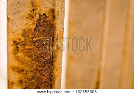 rusty brown and white closeup of handrail in city