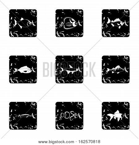 Marine fish icons set. Grunge illustration of 9 marine fish vector icons for web