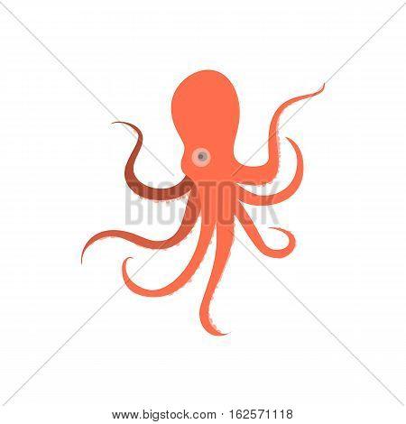 Cartoon octopus monster. Illustration of octopus baby. Octopus cartoon flat style. Cute octopus on white background. Cartoon octopus animal monstrous underwater. Tropical sea life animal octopus sign. Vector