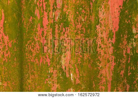 Galvanized - Old galvanized surface with Moss Abstract background.