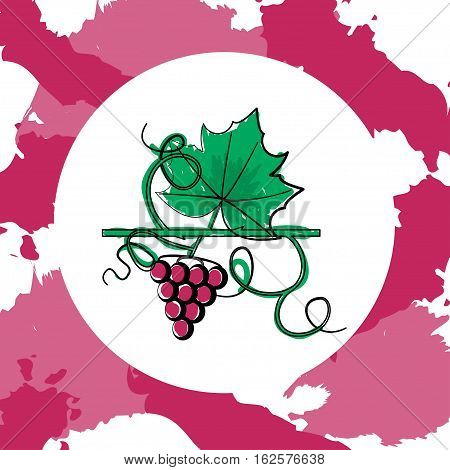 Grape Berry Leaf