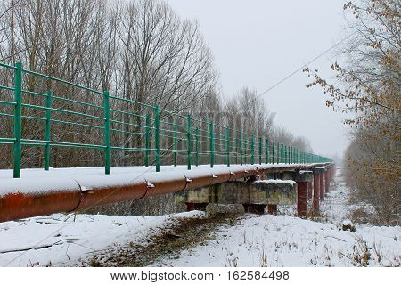 Footbridge across river to the forest in winter