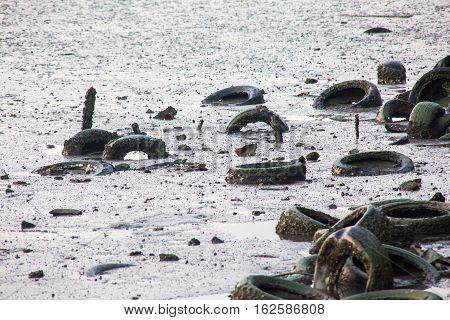 Dirty muddy beach showing a dump site