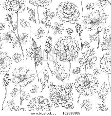 Hand drawn seamless pattern with dahlia anemone petal and leaves. Black and white doodle flowers and grass. Monochrome floral elements. Vector sketch.