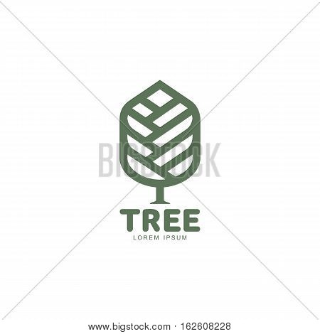 Extended graphic tree logo template with stylized leaves growing from center, vector illustration isolated on white background. Prolonged tree logotype with leaves, environment, nature, growth concept