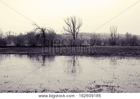 Spring meadow. Village gloomy landscape with bare trees and reflections in water. Melting ice on river. Picture of sadness and loneliness. Toned black and white color processing. Nice soft warm light