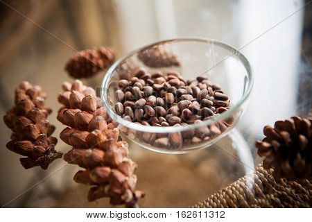 harvest of cedar cones and nuts on table