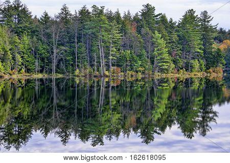 Autumn Adirondack Lake Water Reflections No. 7