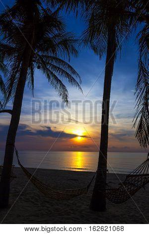 Silhouette coconut at Ban Krut Beach Prachuap Khirikhun Province Thailand