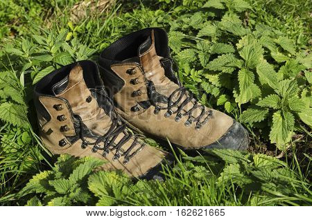 Old touristic shoes among nettle on a ground